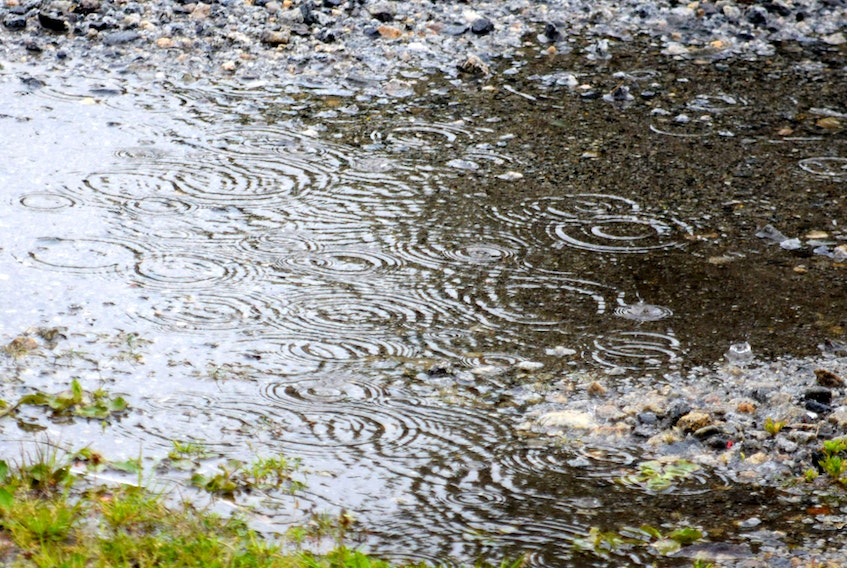 Drought conditions in three of the past five years in Southwestern Nova Scotia has municipal units looking at how best to deal with the issue of dry wells.
