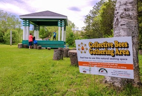 Small groups are welcome to use the stump seating area at the Southend Public Gardens for outdoor meetings. JESSICA SMITH/CAPE BRETON POST