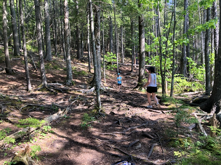 The hike through the woods is not stroller-friendly, unless you have something heavy-duty. It is shaded, which is great for a summer hike on a hot day.  - Heather Fegan