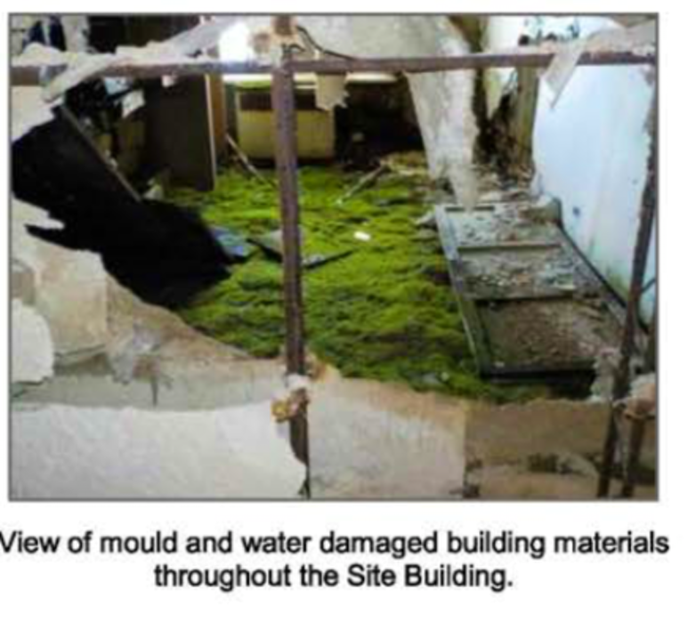 Mold as depicted in an environmental assessment on the former Grace hospital nurse's residence in St. John's.— Contributed