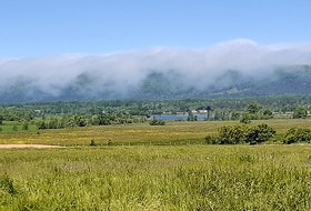 Judy Gushue of Lequille, N.S. sent this photo of fog from the Bay of Fundy rolling over the North Mountain. Judy took this photo in Centrelea, Annapolis County, just a stone's throw away from the house where Ernest Buckler wrote his famous book, The Mountain and the Valley. The Annapolis River is flowing through the Valley in the middle of the picture.