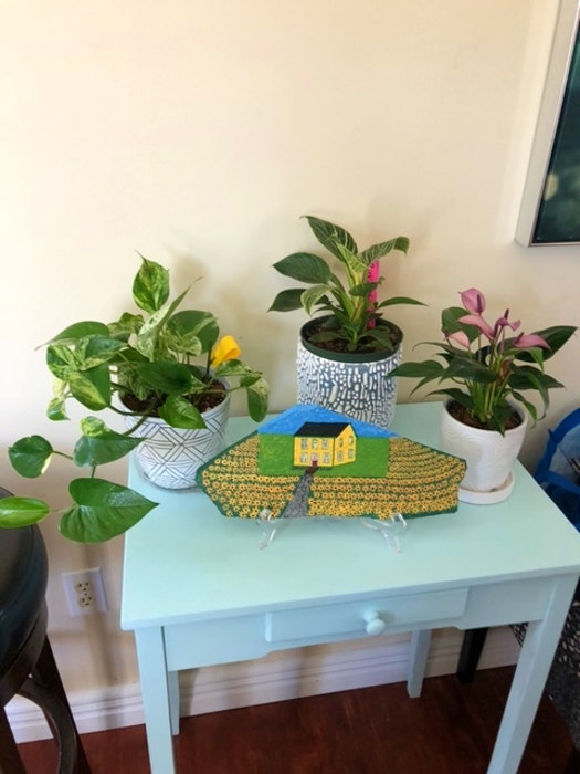 """""""Every time I go to the supermarket, I come home with a plant,"""" says Diane Collins. - Contributed"""
