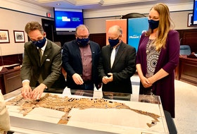 Members of Mount Pearl city council, from left,Deputy Mayor Jim Locke, Mayor Dave Aker, Coun. Bill Antle and Coun. Isabelle Fry, admire a 3D model rendering the overall vision of the revitalization plan for the city's centre.