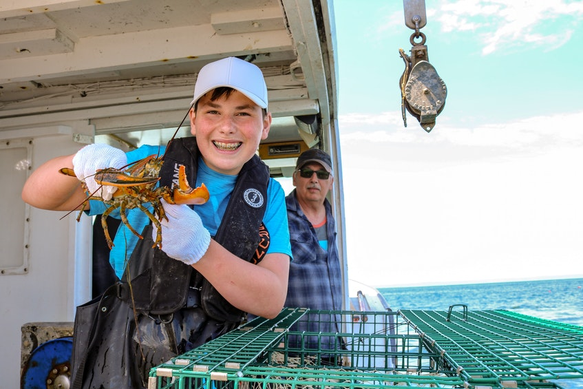 Nate Boone, 13, began lobster fishing with his father and grandfather, Willie Cadden (seen behind him here) this year. JESSICA SMITH • CAPE BRETON POST