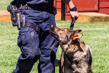 After three years on the job, RCC police dog Dali has retired because of medical issues. — RNC/Twitter