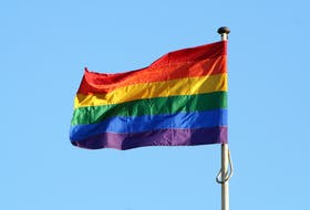 Politicians in Newfoundland and Labrador are condemning the recent vandalism of Pride flags at two schools in the St. John's area.