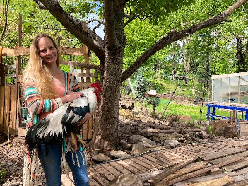 Karen Hearn with her rooster in her backyard in Mulgrave. - Aaron Beswick
