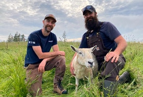 Brothers Jordan and Evan with one of the ewes at Kleiner Farms. CARLA ALLEN • TRICOUNTY FARMS