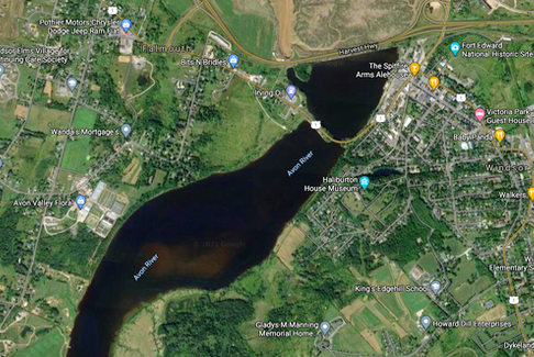 A suspected case of blue-green algae has popped up in West Hants, near the Avon River, between Windsor and Falmouth.
