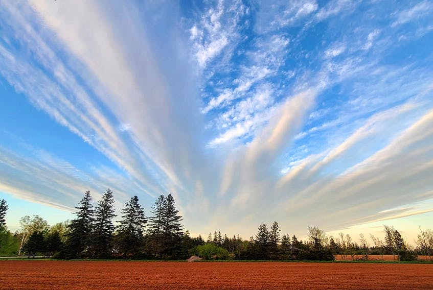 Any time the wind changes speed or direction with height, it's called wind shear. Clouds travel with the wind. Depending on what layer of the atmosphere they are in, they move in different directions and at different speeds. This lovely photo taken by Tanya Gallant is perfectly framed; the island's remarkable red soil adds to the beauty.