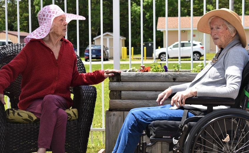 Garden Club members Edna Gregory (left) and Joan Dempsey chat beside a flower bed just starting to come to life. - Richard MacKenzie