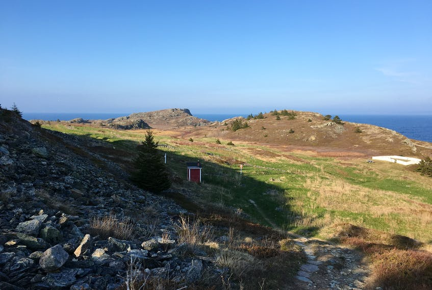 The Bay Roberts Heritage Shoreline Walk is one of several trails that will be a part of the 2021 Trinity Conception Placentia Health Foundation Trail Challenge.