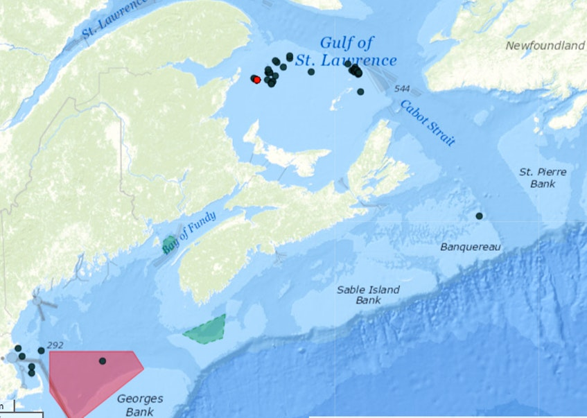 Data from May 12-26 on location of right whales. From NOAA Right Whale sighting and advisory system - Contributed