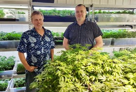 Mira-Juana Cannabis Inc. co-owners John Gatza, left, and Gary Tighe saw their products hit Nova Scotia Liquor Corporation shelves this month. The Cape Breton micro-cultivation operation is the first in the province to have its cannabis sold in NSLC stores. CONTRIBUTED