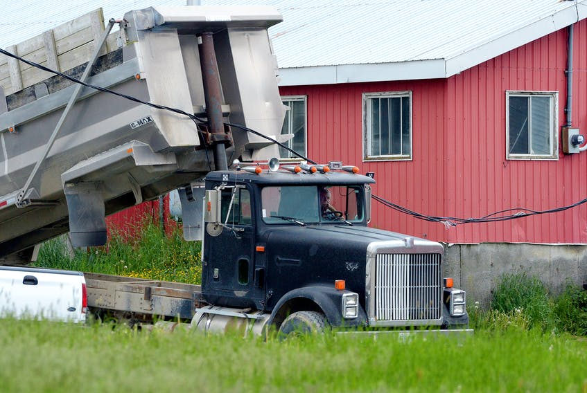 A dump truck pulled down electrical wires at a St. John's farm Wednesday night, temporarily trapping the driver. Keith Gosse/The Telegram