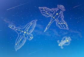 Can you spot the summer triangle in the night sky? The stars that make it up are visible in these constellations.