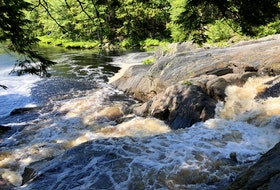 Mill Falls, at Kejimkujik National Park, is a perfect little family-friendly hike for all ages. It's a 2.7-kilometre return hike, and is a beautiful and scenic route.