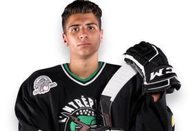 The Cape Breton Eagles selected defenceman Émile Perron with the eighth overall pick at the 2021 Quebec Major Junior Hockey League Entry Draft.