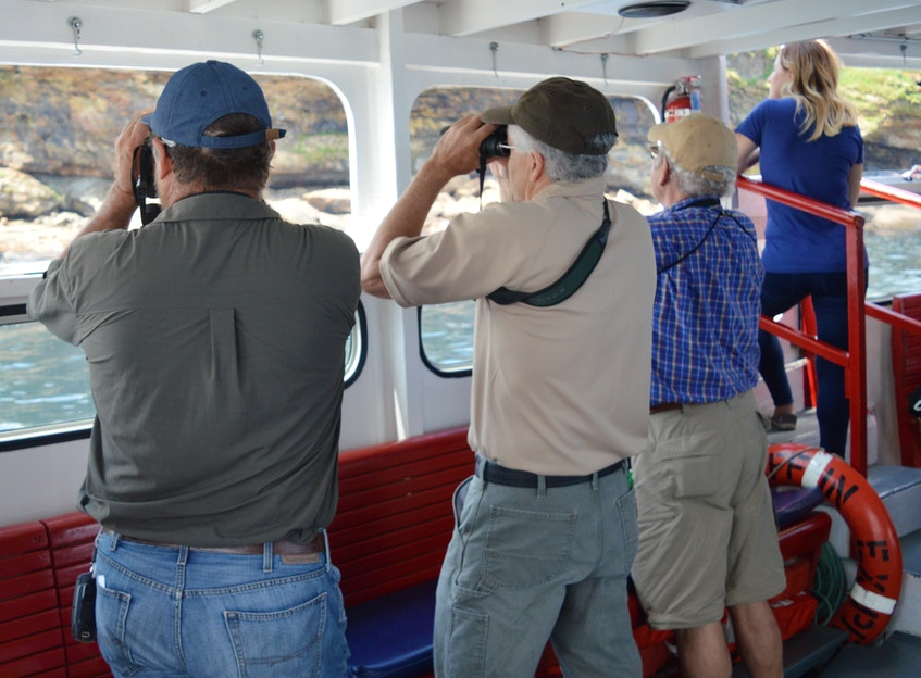 Cape Breton's Bird Islands offer visitors a rare chance to see puffins, cormorants, seals and eagles in their natural, and remote, environment. This Cape Breton Post file photograph shows a group of bird watchers scouring the islands from a tourist boat that operates tours during the summer. DAVID JALA/CAPE BRETON POST - David Jala