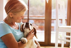 Having an animal companion can be a great way to feel less lonely. - Storyblocks Photo.
