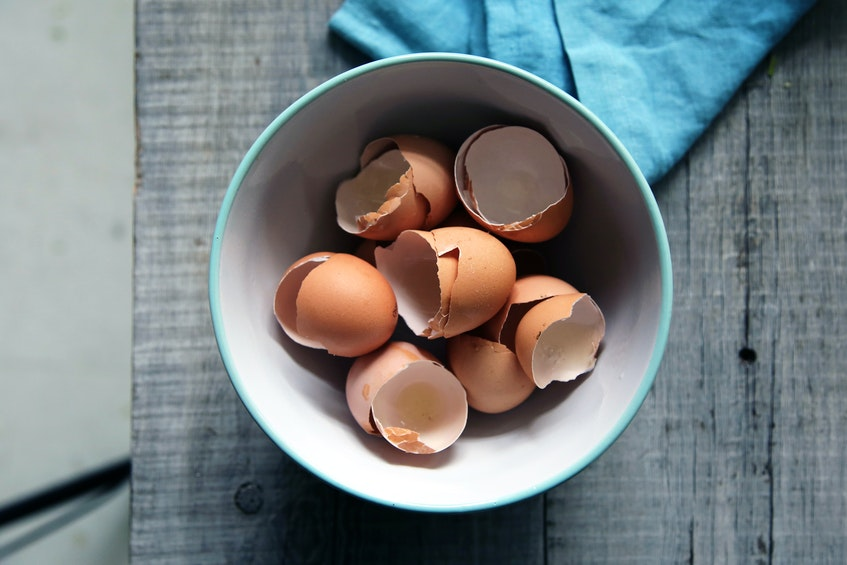 Saltwire foodie Mark DeWolf says use your leftover egg shells in your garden as a natural pest repellent. - Unsplash