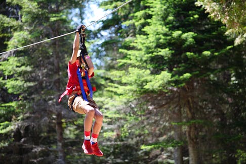 Planning to visit New Brunswick this summer? Add Timbertop Treetop Adventure Park to your to-do list.