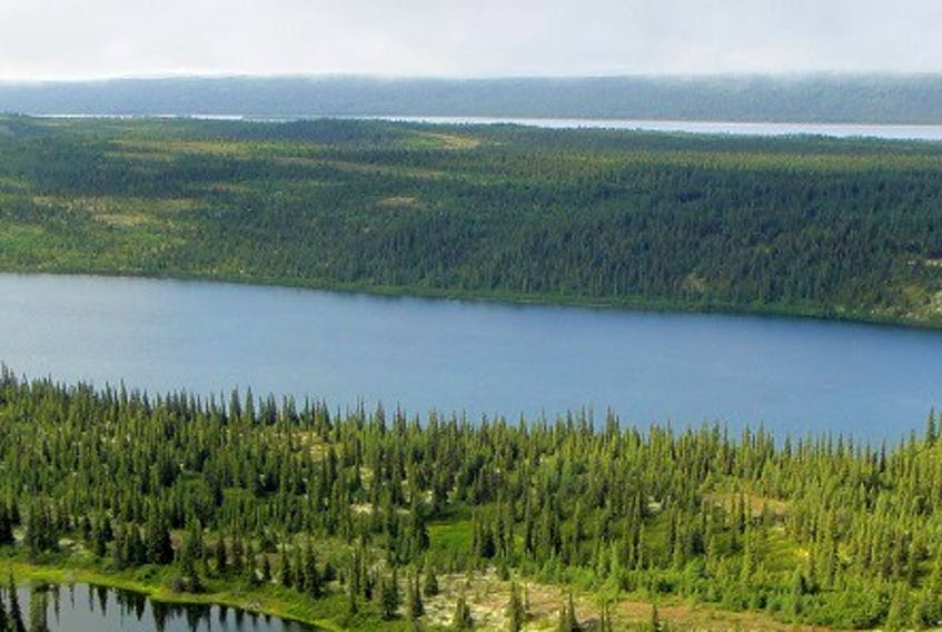 The Joyce Lake Direct Shipping Iron Ore project, located in western Labrador 20 km from Schefferville, Que., is undergoing an environmental impact assessment with the province right now and once that's complete they hope to raise $260 million to move the project to production. - Courtesy of Century Global Commodities Corp.