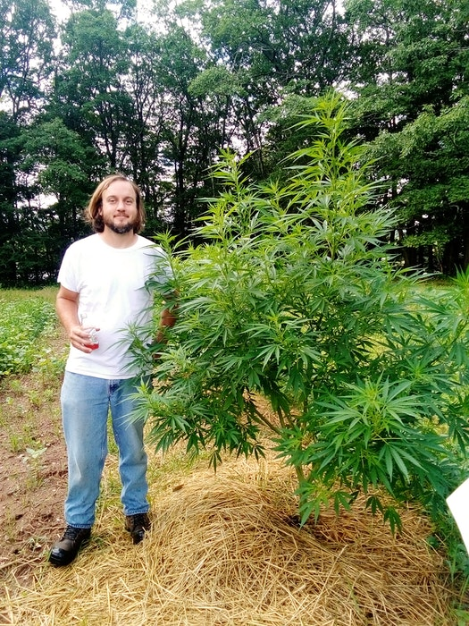 Adam Webster, co-owner of Annapolis Valley Craft Cannabis, obtained a micro-cultivation license from Health Canada but he has struggled to find an approved buyer to support his budding business venture. He is advocating for regulatory changes that would make it possible for craft cannabis producers to sell directly to consumers at farmers' markets. – Contributed