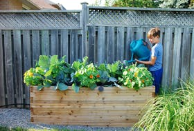 Raised beds and container gardening are both well-suited for life at the cottage.