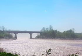 Residents, business owners and visitors to Windsor are concerned about the new dust storms that are cropping up in town. The dust storms appear to be caused by a large dried-out mudflat on the other side of the Falmouth bridge.