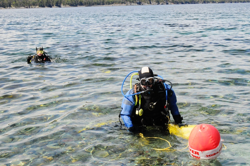 Divers Katy MacPherson (front) and Doug Cop, carefully step back into the ocean waters to collect specimens for the Petty Harbour Mini-Aquarium.   -Joe Gibbons/The Telegram - Joseph Gibbons