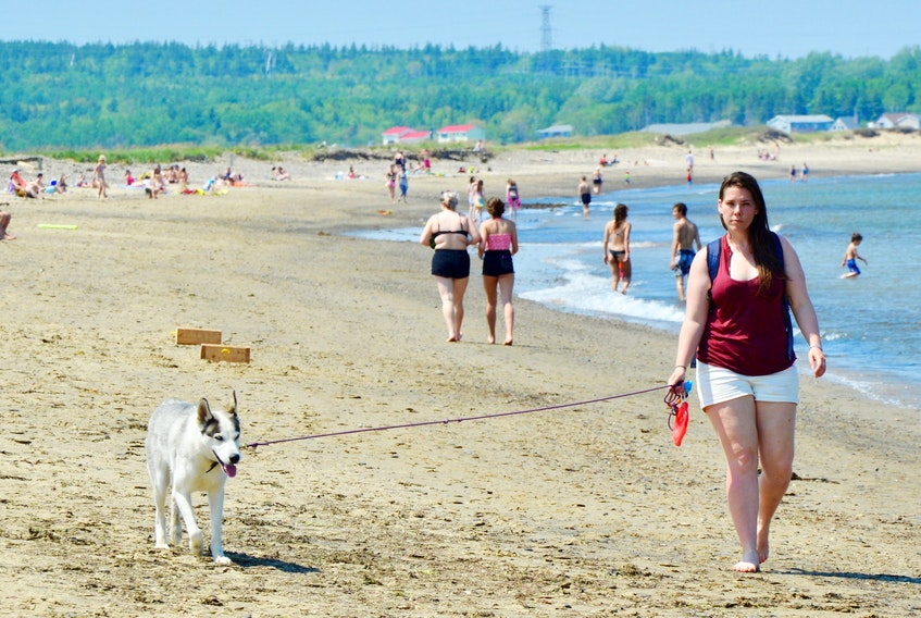 While some chose to get into the water, Heather MacKenzie of Sydney took advantage of Tuesday's warm weather to walk her Siberian husky Lily along Dominion Beach. Temperatures were unseasonably warm at 29 C plus making it an ideal day to spend at the beach. ELIZABETH PATTERSON/CAPE BRETON POST