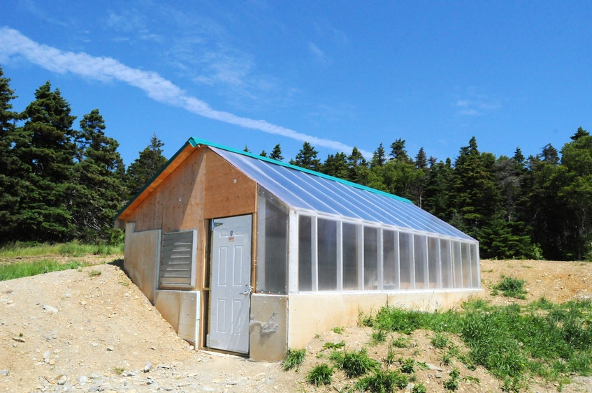 Work on this earth-sheltered greenhouse at O'Brien's Farm in St John's was started in April. The project is now almost complete. — Joe Gibbons/The Telegram