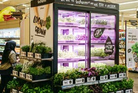 Sobeys has partnered with Infarm to bring fresh greens and herbs grown in modular farming units to select stores. Sobeys