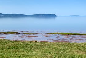 Pauline Murray shot this photo at Evangeline Beach near Grand Pré, N.S. as the tide was going out late afternoon.  The beach, not too far from the Grand-Pré National Historic Site, features stunning views of the Minas Basin and Cape Blomidon.  If you look closely, just beyond Cape Blomidon is the Fundy coastline around Parrsboro in Cumberland County.
