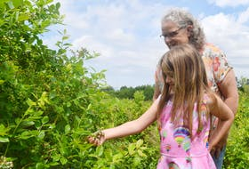 Marja Jorgensen and her granddaughter Willow check out some berries that are starting to form on their high bush blueberry plants in West Branch. This year's weather conditions have been ideal and the Jorgensens are expecting to have a great crop.