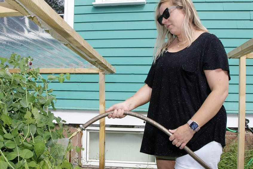 Extreme heat calls for some adjustment to garden care such as watering more frequently and protecting plants from sun scald with a cardboard shade.