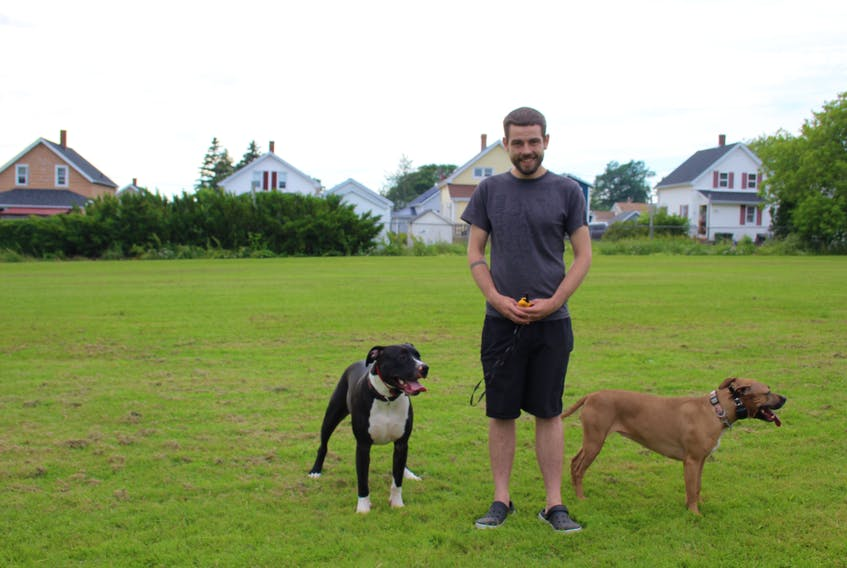 Daniel Cantin, owner of Gibson's Legacy, takes his two dogs, Rogue and Roxi, for a walk in the park.