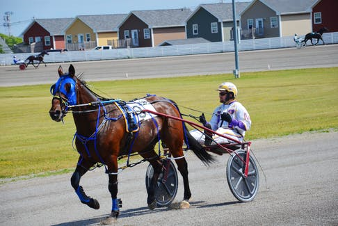Driver Brodie MacPhee and Bugsy Maguire are back looking to defend their Governor's Plate title. They are the favourites in the second elimination on Sunday, July 4, at Red Shores at Summerside Raceway.