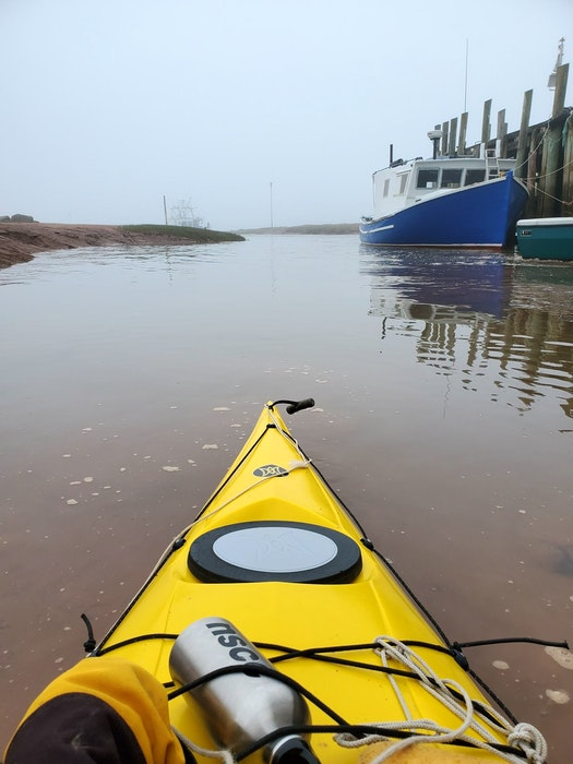 Dale Gruchy often kayaks in the Bay of Fundy in N.S., lakes throughout the Annapolis Valley, as well as spots on the South Shore like Mahone Bay. — Contributed