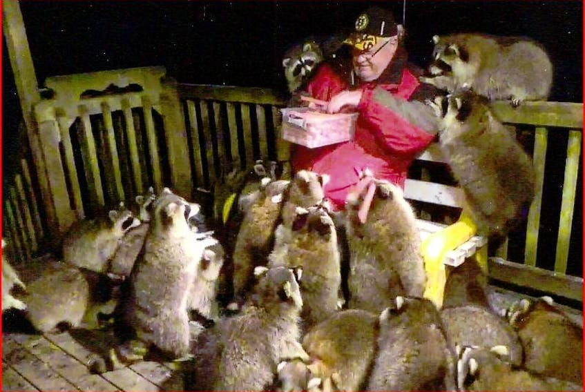 James Blackwood has a worldwide following for his videos of racoons he feeds.