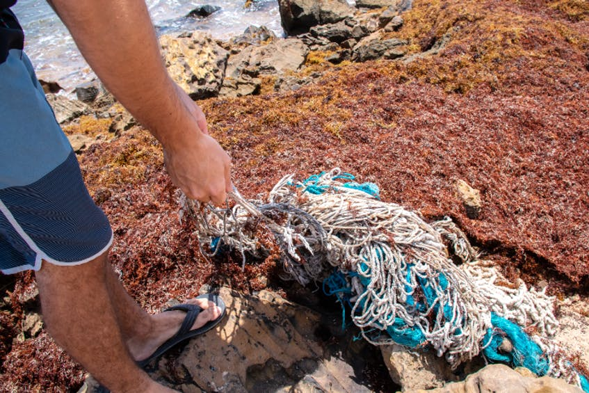 Lost ropes from fishing gear regularly wash up on the Atlantic shore. - Contributed