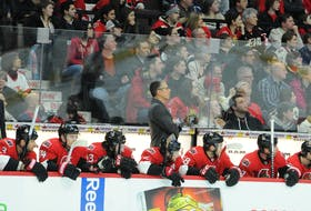 Dave Cameron spent five seasons behind the bench of the National Hockey League's Ottawa Senators, including two as head coach. Cameron is returning to the nation's capital as head coach of the Ottawa 67's of the Ontario Hockey League.