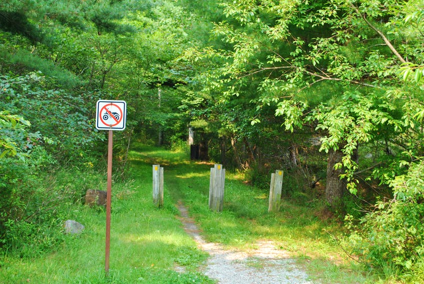 The rail trail as it passes through the Town of Shelburne, is a tree-canopied walk. - Kathy Johnson
