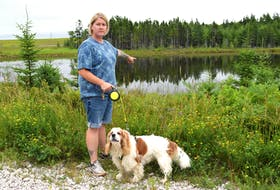 Jennifer LeMoine of New Waterford, with her dog Winston, points to the location where a live beaver trap was recently left on the bank of the pond along the Summit Recreational Trail in Scotchtown which almost killed her dog. LeMoine said the beavers were a huge part of the enjoyment of the trail but were killed off with approval by Nova Scotia Lands and Forestry due to a flooding issue rather than relocated. Sharon Montgomery-Dupe/Cape Breton Post