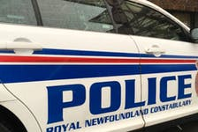 Royal Newfoundland Constabulary said a man injured an animal during a break-in spree in the west end of St. John's Thursday evening.