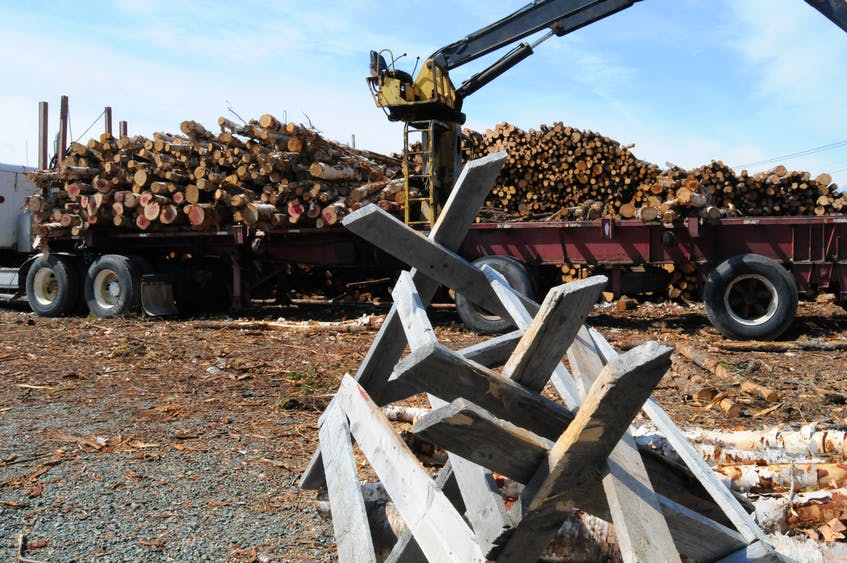 The province has proposed new five-year plans for three forestry regions in Newfoundland and Labrador. The public has until Aug. 20 to offer comment on those plans. JOE GIBBONS/Telegram photo — File photo