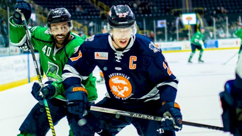 Sydney's Joey Haddad was added to the protected list for the Greenville Swamp Rabbits recently. PHOTO CONTRIBUTED.
