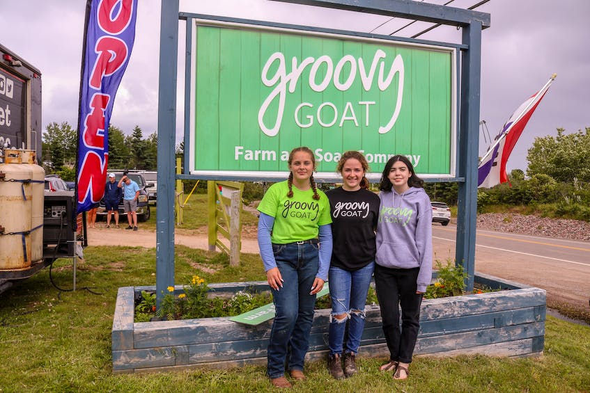 Groovy Goat employees Corey Donovan Morrison, 13, from left, Molly Gillis, 14, and Emily Burke, 19, on day two of the Groovy Goat barn's rebuild. JESSICA SMITH/CAPE BRETON POST