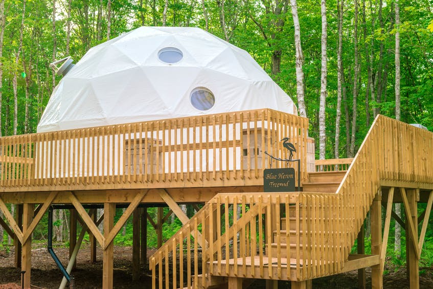 Treetop Haven in PEI's Mount Tryon also features domes where guests can stay, although their five geodesic domes are nestled into the trees.